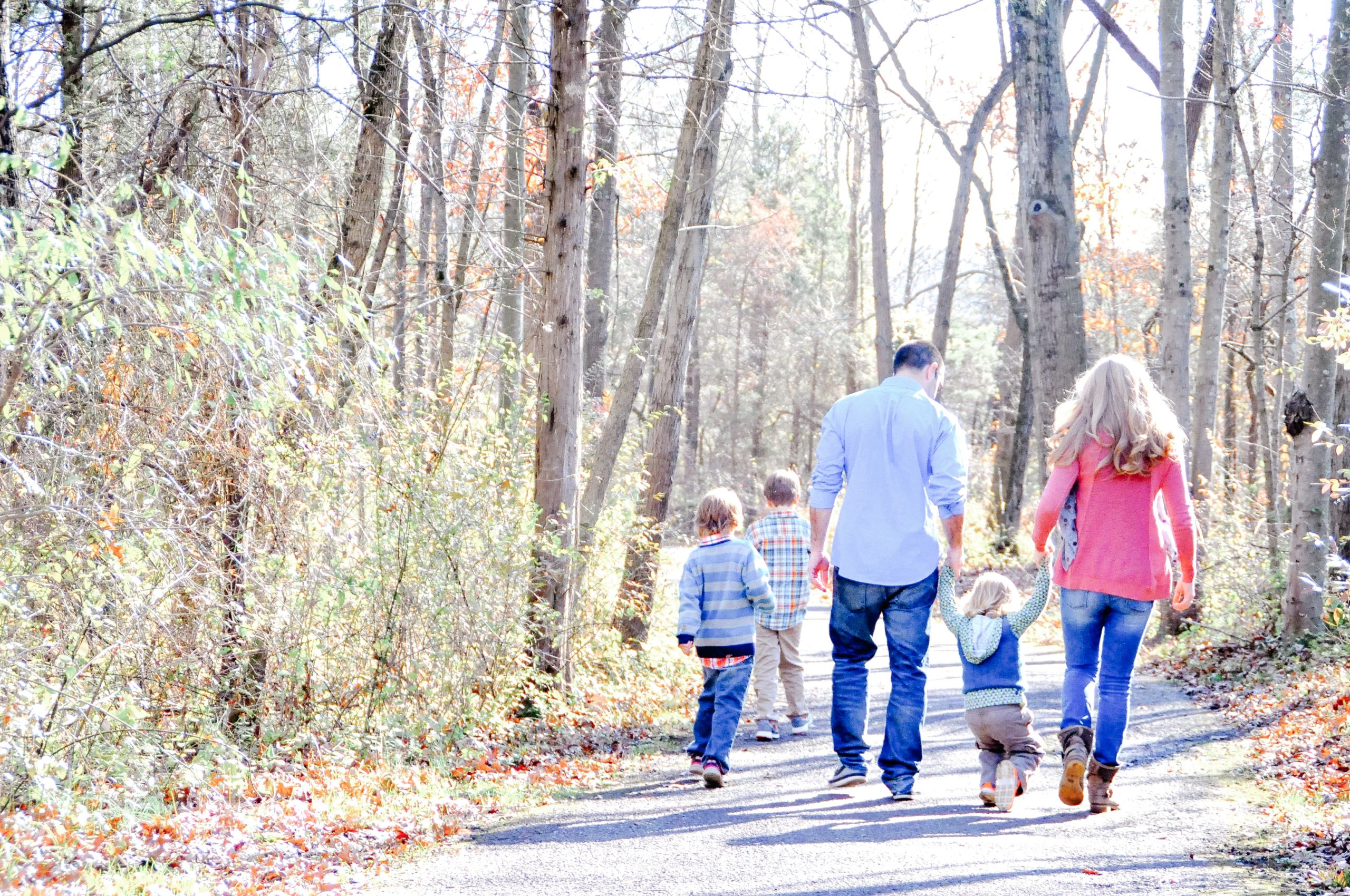 Family walking on a path trough the woods
